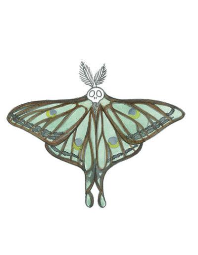 vanité-papillon-bleu