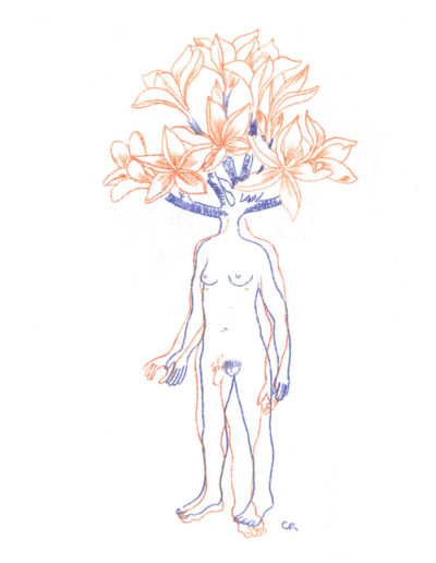 amours-botaniques-solo