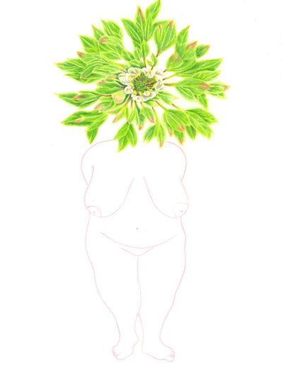 biodiversité 10 /crayons de couleurs/A4/2020