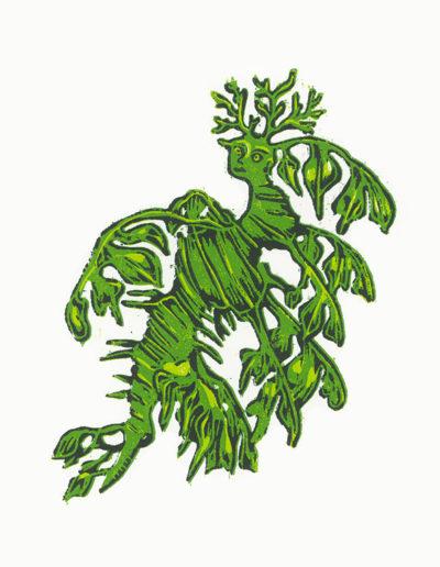 Anthropocampe feuille-gravure sur bois-21x29 cm
