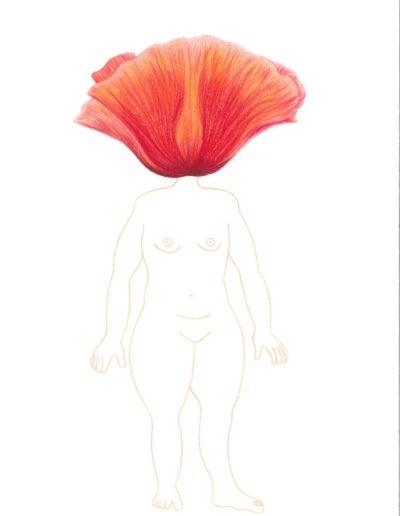 biodiversité 36/crayons de couleurs/A4/2021