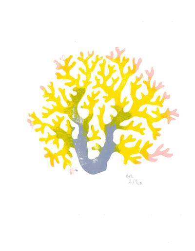 corail jaune - gravure sur bois - 15x20 cm - 2019